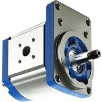 Pompa ad ingranaggi   MF2-2004 + 299 SKF 0,2 l / min 12bar / 0190