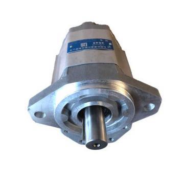 Pompa ad Ingranaggi MICROPUMP P/N X8037 054 MOD: 17F-00 + PAPST 933 2725 108 405
