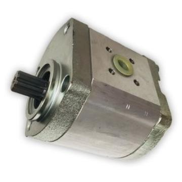 Pompa frizione di sterzo Goldoni ITMA cod.620484