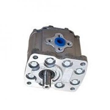 E3549613M91 Pompa Idraulica Gruppo 3 Originale Argo Parts Ecoline Landini