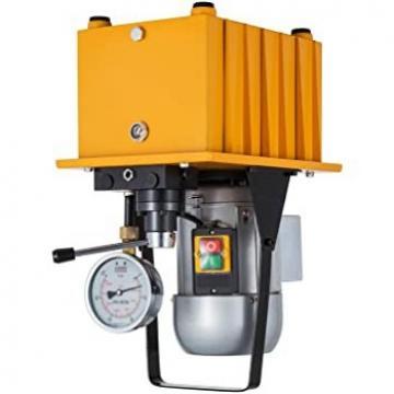 Nidec EEQ-7T1 Pompa Idraulica & Motore 3 Ph 1/2 HP