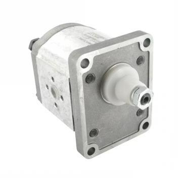 Rexroth hydraulic pump, No:  9510090001