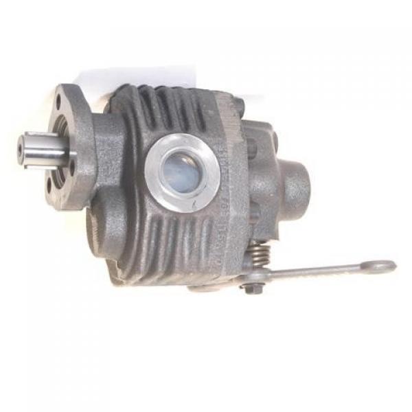 Nuova inserzioneINGRANAGGIO Idraulico pumpmetal Power Pump con valvola di sicurezza Kit per 1/14 RC DUMP TRUCK #1 image