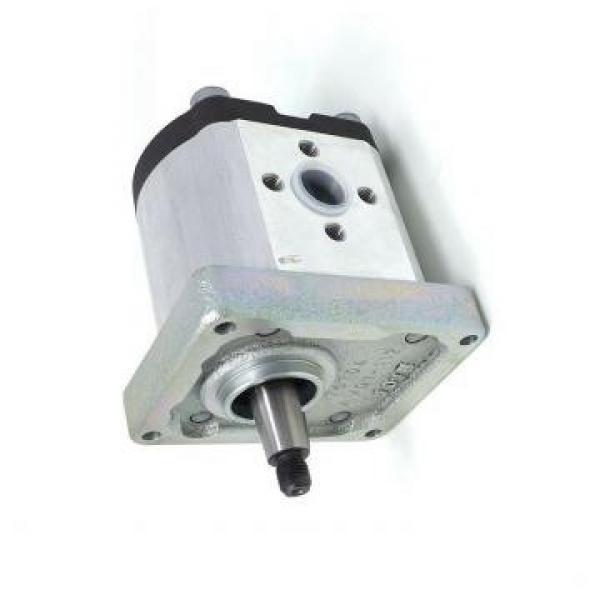 pompa idraulica iveco #1 image