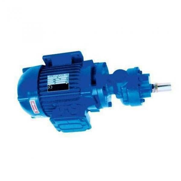 Pompa idraulica ad ingranaggi 30C28X146HF 28cm / MX 0181 #1 image