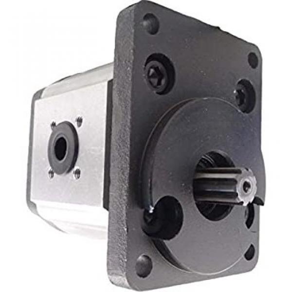 5179719 pompa idraulica ad ingranaggi #2 image