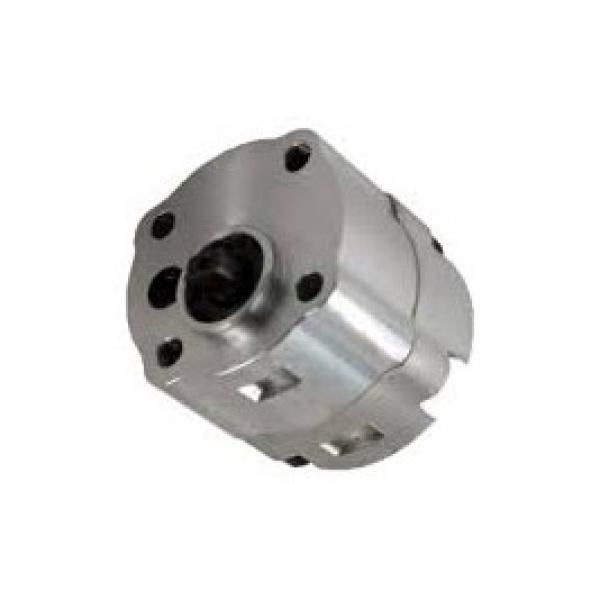 Pompa idraulica ad ingranaggi 30C28X146HF 28cm / MX 0181 #2 image