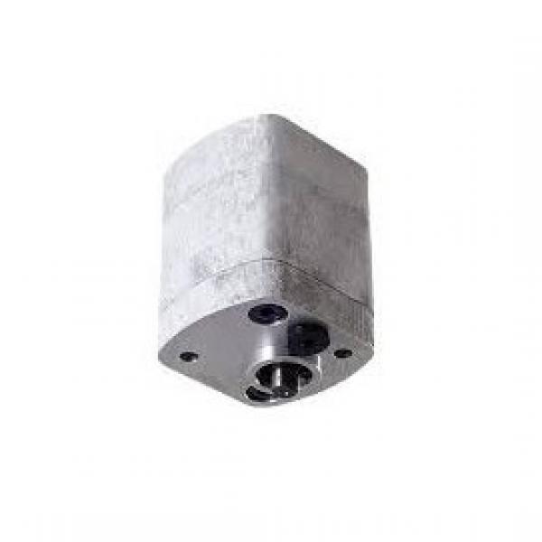 5179719 pompa idraulica ad ingranaggi #1 image