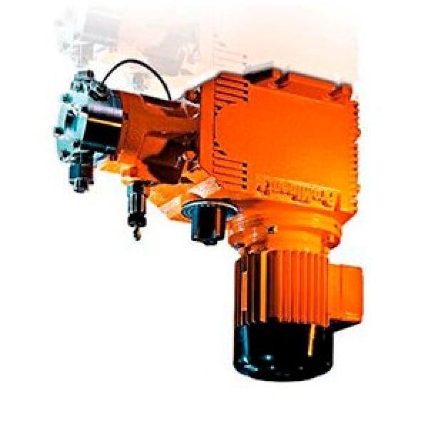 ALFA ROMEO 159 939BXM2B 2.4D Power Steering Pump 07 to 11 939A9.000 PAS Shaftec #1 image