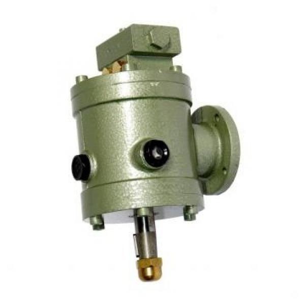 ALFA ROMEO 159 939BXM2B 2.4D Power Steering Pump 07 to 11 939A9.000 PAS Shaftec #2 image