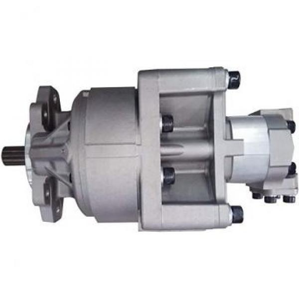 Flowfit Hydraulic Group 1 Mechanical Clutch Pump Assembly #1 image