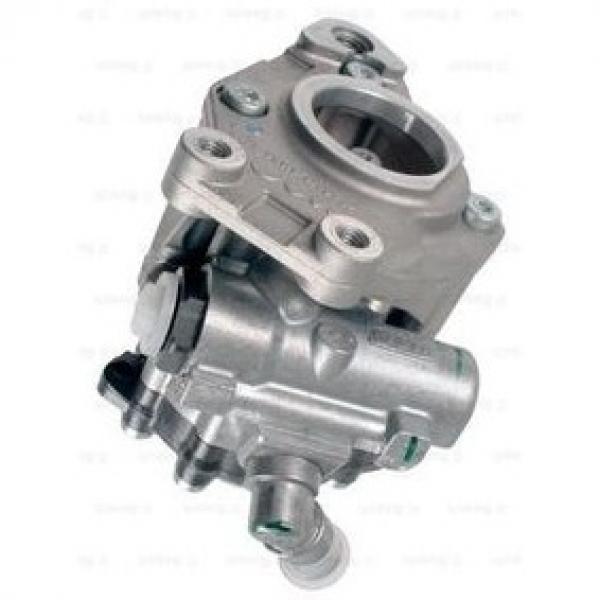ALFA ROMEO 159 939.AXN1B 1.8 Power Steering Pump 09 to 12 939B1.000 PAS Shaftec #1 image