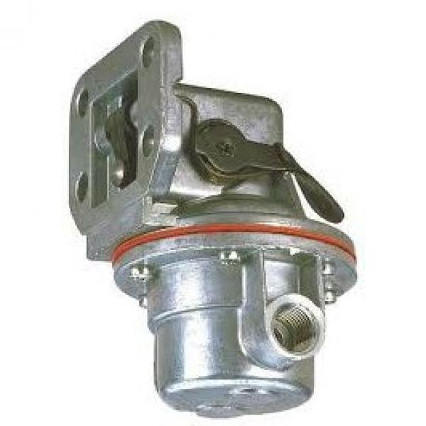 POMPA OLEODINAMICA IDRAULICA GRUPPO 2 30 CC DX- FLANGE IN GHISA - GEAR PUMPS #2 image