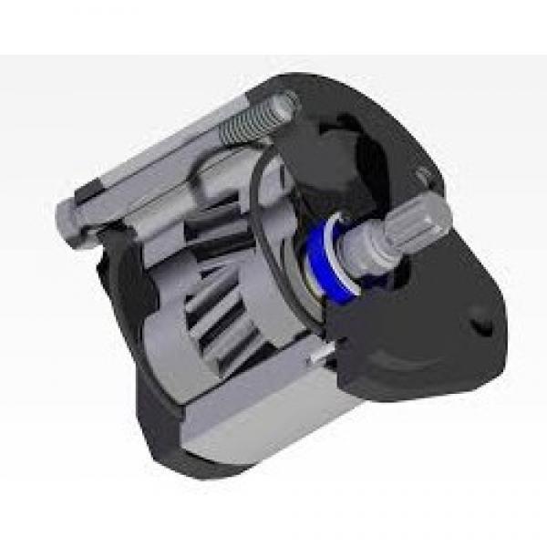 Kompass cilindrata Variabile Pompa A Pistone Idraulica 36CC MANUALE 30-215 BAR #1 image