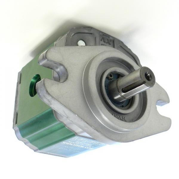 Motore oleodinamico BFT GIUNO ULTRA BT A50 24V P935106 5m 800k idraulico #1 image