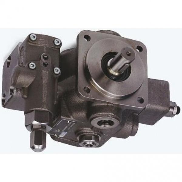 BOSCH REXROTH AV Series POMPE POMPA valvola di compensazione controlla idraulico #1 image