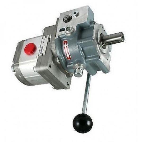 Vickers VVA20FP-CDWW21 Idraulico Vane Pompa Thru Drive 9 Gpm 19 cm3 / R 1450 Psi #1 image
