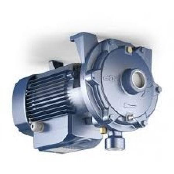 Viking Pump / Index Corporation Modello: Hj495 Pompa. Nuovo Old Stock. No #1 image