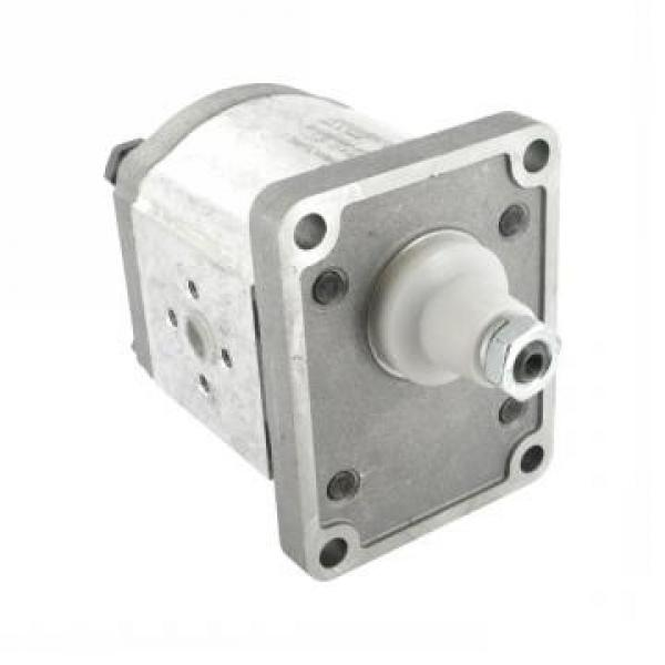 11 GPM Hydraulic Two Stage Hi-Low Gear Pump At 3600 Rpm #1 image