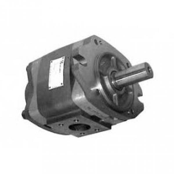 Hydraulic Pump 705-57-21000 For Komatsu WA200 WA250-3MC WA250PT-3MC WHEEL LOADER #1 image