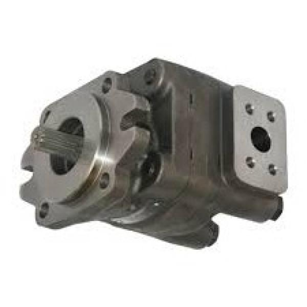 16 GPM Hydraulic Two Stage Hi-Low Gear Pump At 3600 Rpm #1 image
